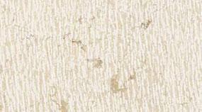 Lavorazione Marmo Colore Texture Pietra Lessinia Bianca