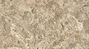 Lavorazione Marmo Colore Texture Auresina Fiorita