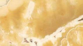 Lavorazione Marmo Colore Texture Alabastro Egiziano
